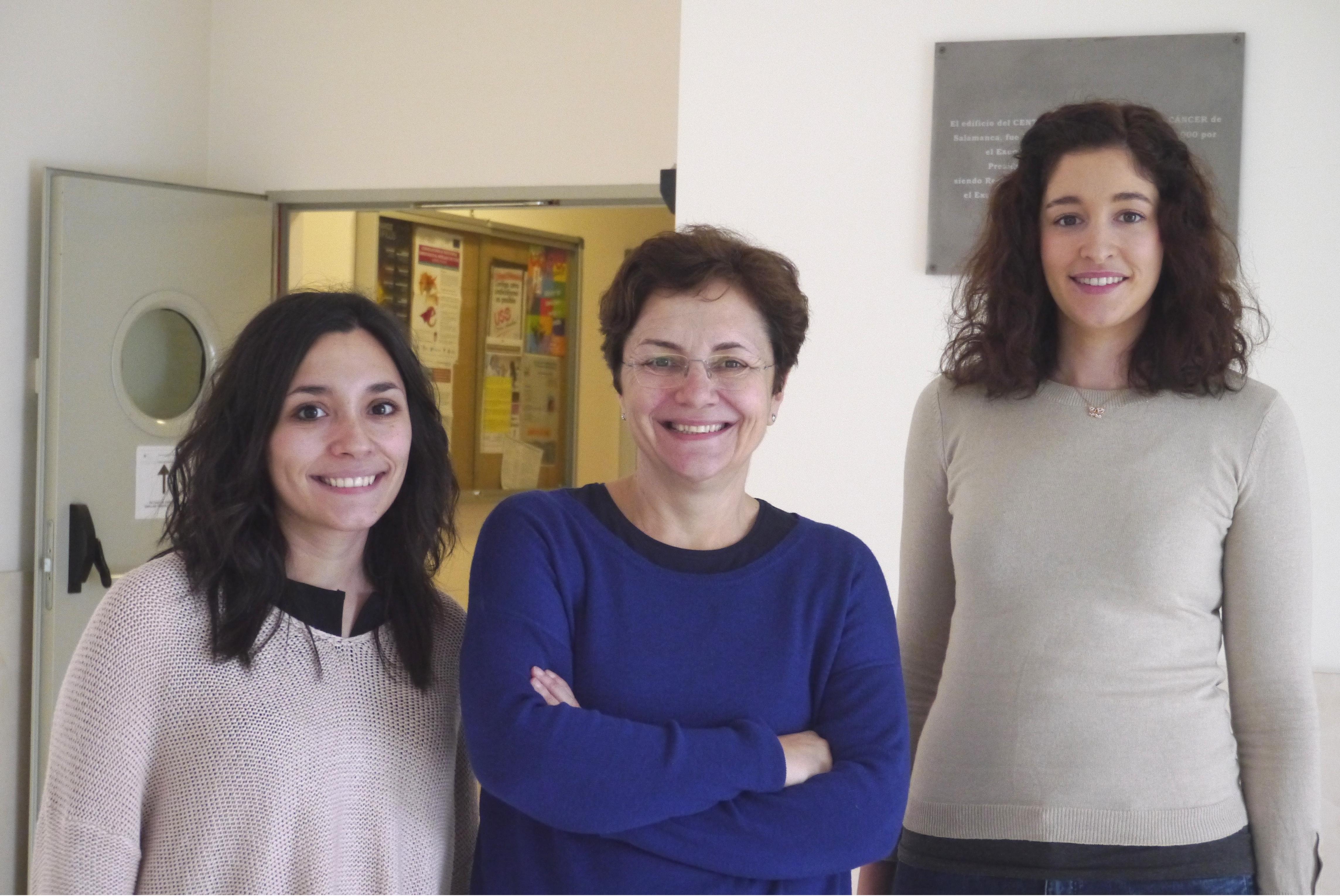 •Investigadores del Centro de Investigación del Cáncer (CIC-IBMCC) de Salamanca y del CIBER de Cáncer (CIBERONC) desarrollan un nuevo método que permite, por primera vez, el estudio exhaustivo de la síntesis de los ribosomas en células humanas