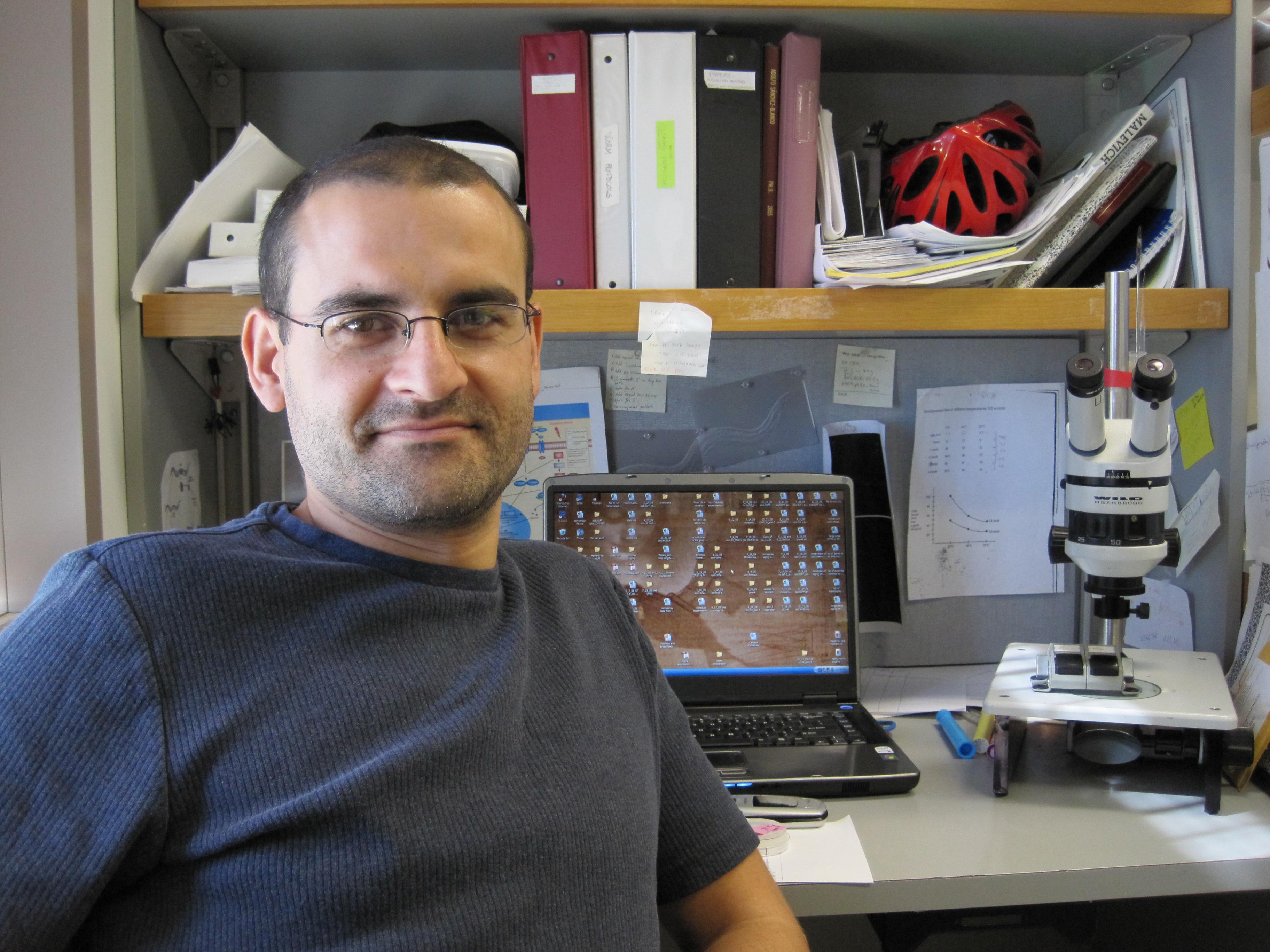 El salmantino Adolfo Sánchez Blanco predice la variabilidad de la duración de la vida en el gusano C. elegans