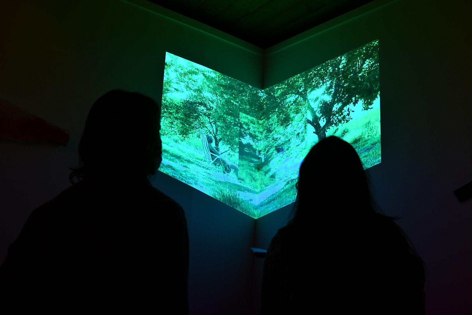 El Espacio de Arte Experimental de Fonseca acoge la exposición MONSTRUAR