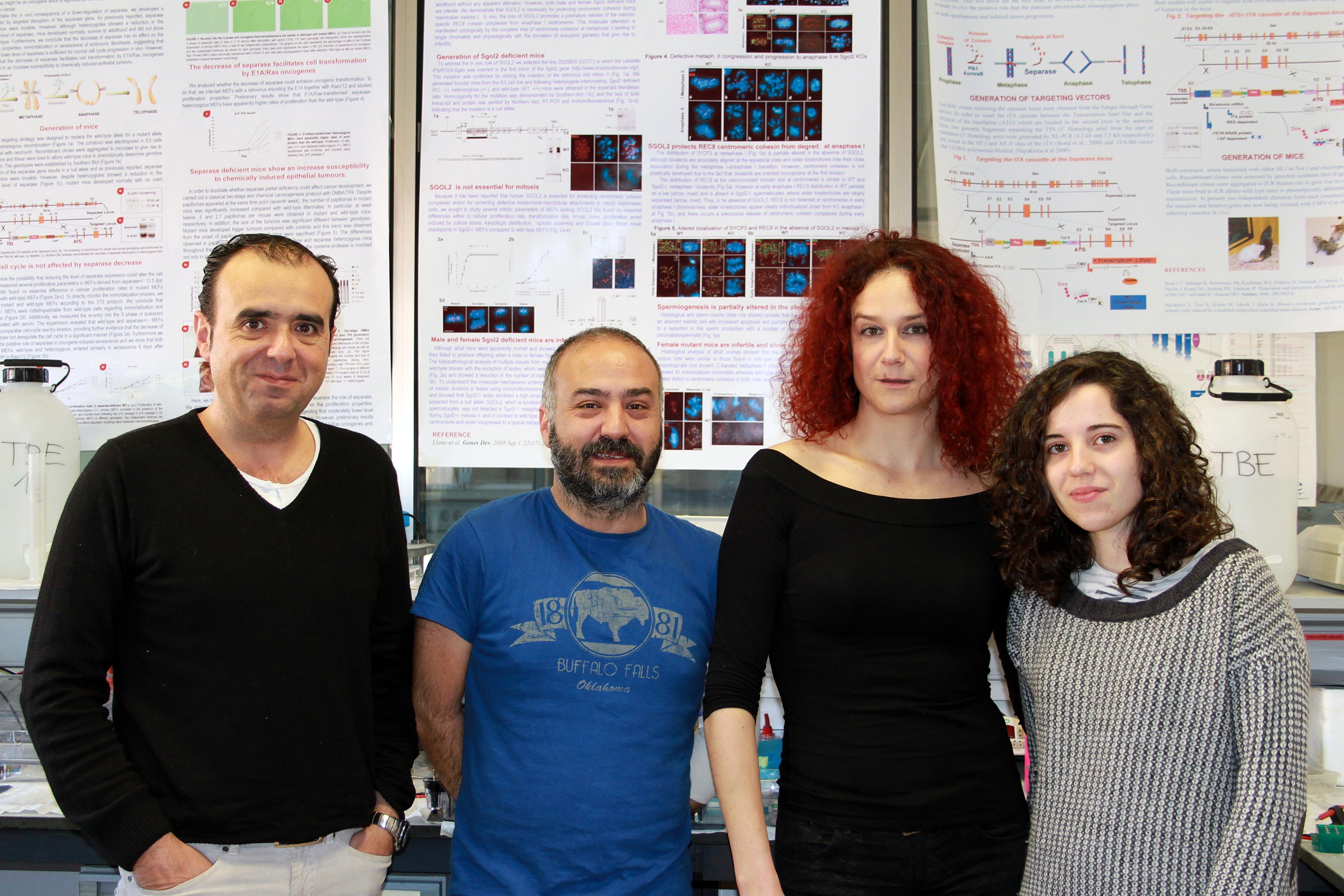 Investigadores de la Universidad de Salamanca y el CSIC hallan  una causa genética de la insuficiencia ovárica prematura