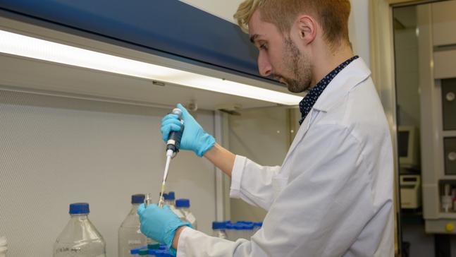 Investigadores de la Universidad de Salamanca prueban con éxito in vitro una alternativa no tóxica a la quimioterapia en cáncer