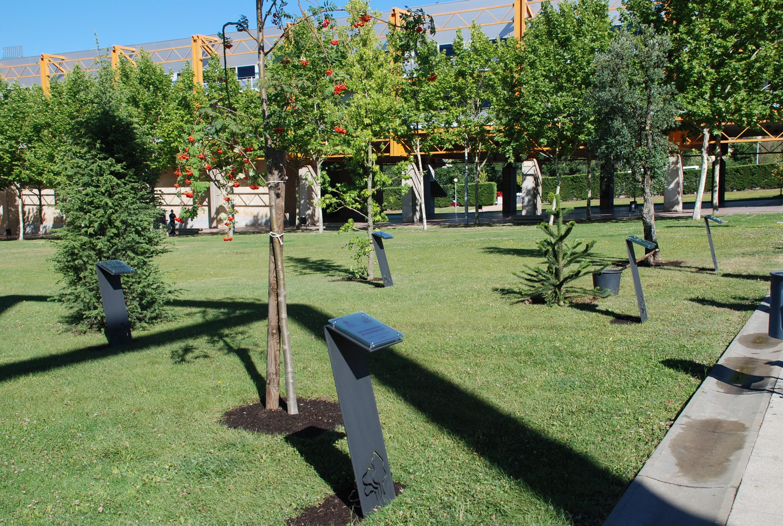 Inauguración del Bosque Conmemorativo de Árboles Singulares