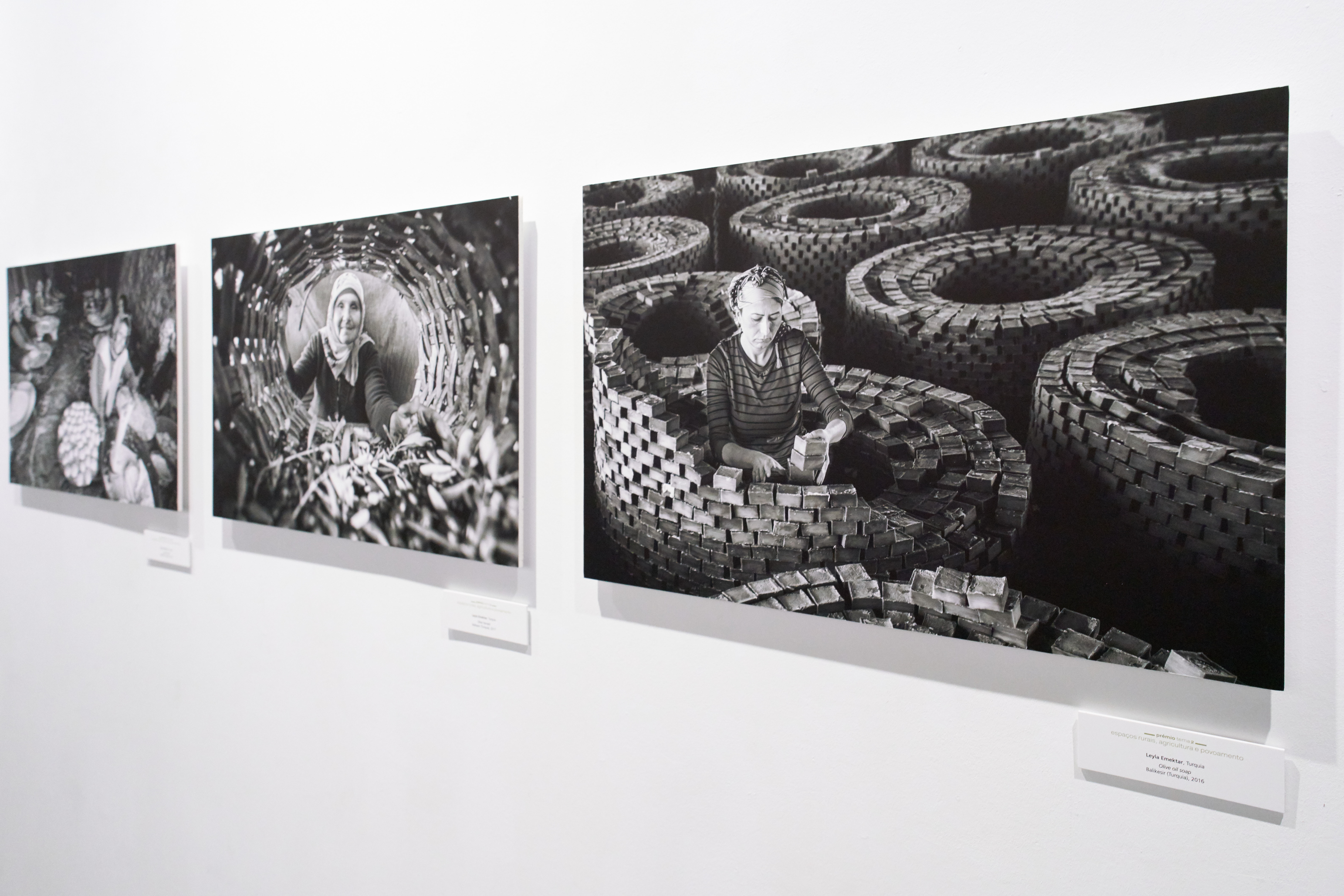 La Universidad de Salamanca y la Junta de Castilla y León muestran las fotografías ganadoras del concurso 'Transversalidades. Fotografía sin fronteras'