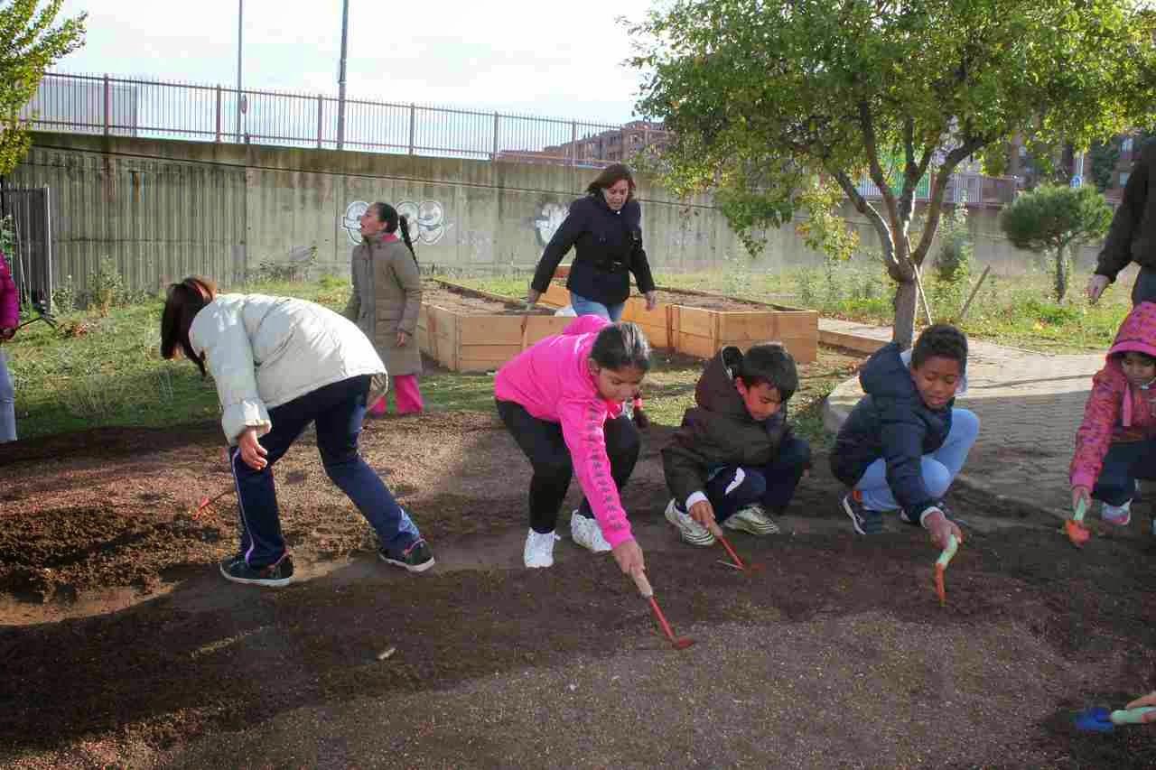 La Universidad de Salamanca pone en marcha la Red de Huertos Escolares Comunitarios