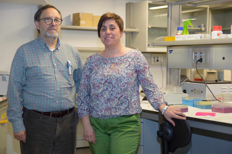 Científicos de la USAL estudian cómo regenera el nervio óptico en peces y su posible aplicación al sistema visual humano