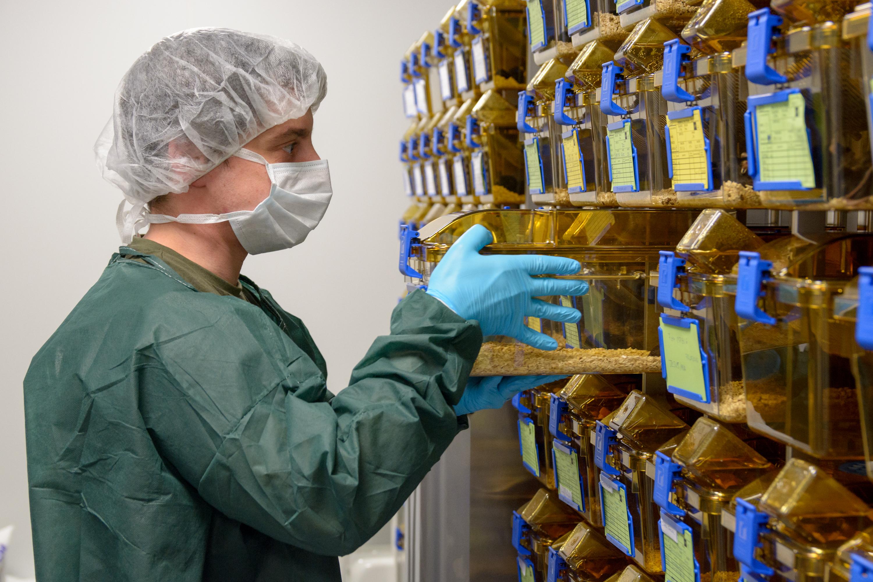 La USAL inaugura la nueva Unidad de Comportamiento Animal de su Servicio Nucleus de Apoyo a la Investigación