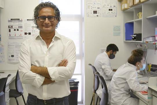 Una investigación coordinada por la Universidad de Salamanca revela que el metabolismo energético cerebral conecta el consumo de cannabis con la insociabilidad
