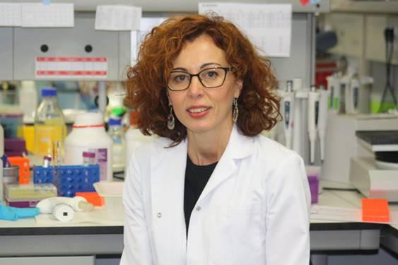 La profesora de Biología Celular de la Universidad de Salamanca Conchi Lillo ha sido también elegida vocal en la nueva Junta Directiva de la SENC