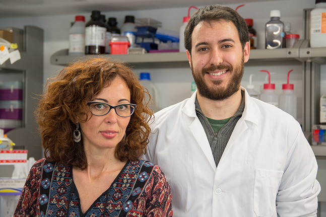 Investigadores de la Usal crean una plataforma pionera para la búsqueda de fármacos en la lucha contra la degeneración macular asociada a la edad