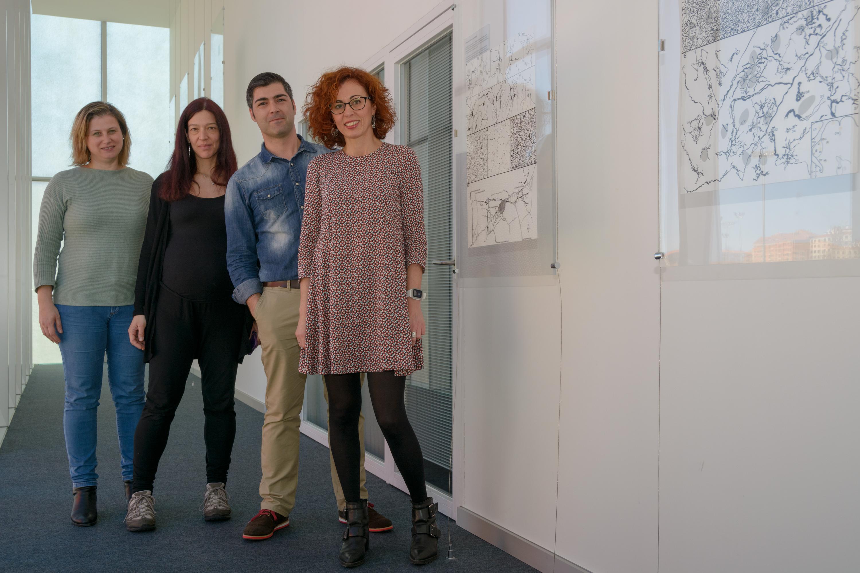 El Instituto de Neurociencias de Castilla y León de la Universidad de Salamanca celebra una nueva edición de la 'Semana del Cerebro'