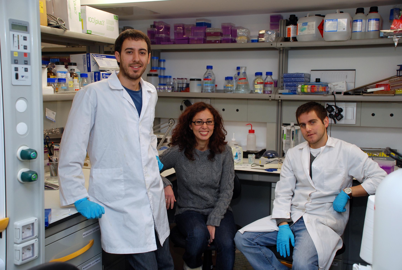 La Universidad de Salamanca, pionera en el estudio de los procesos de degeneración retiniana con la familia de proteínas CRB