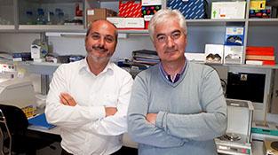 Alberto Ocaña y Atanasio Pandiella en el centro de investigación del cáncer