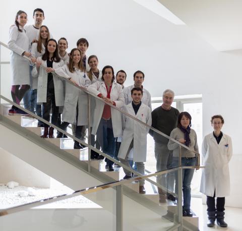 Grupo de investigación del cáncer