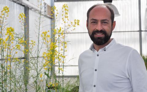 La Universidad de Salamanca avanza en la investigación sobre la respuesta a estrés de las plantas en condiciones ambientales adversas