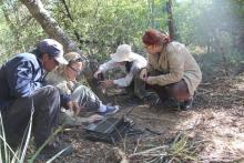 Andrea Weiler con parte del equipo de colaboradores trabajando en el campo colocando y comprobando las cámaras trampa